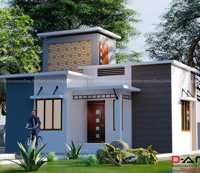 700 sq ft small home design with pretty exterior